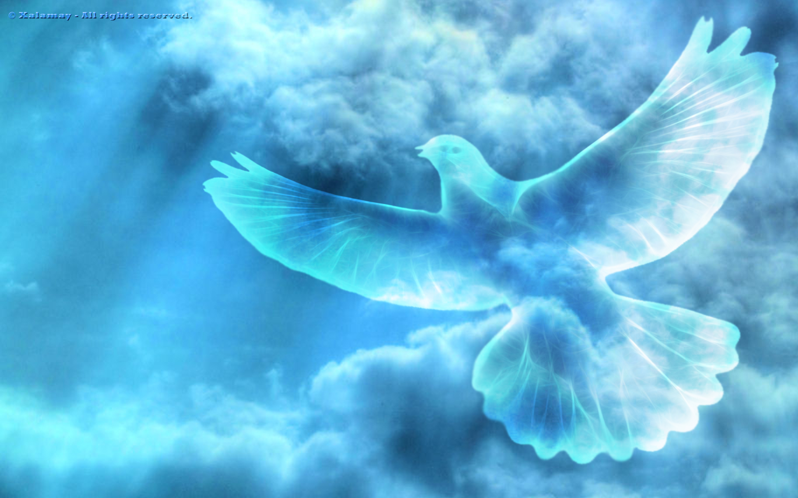 holy spirit dove wallpaper images pictures becuo