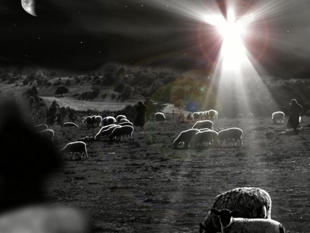 http://www.worshiphousemedia.com/motions/16159/Angel-And-Shepherds-Loop