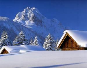 http://www.picturesofwinter.net/snowoncabins.jpg