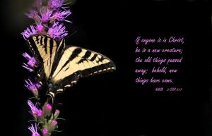 Image Credit: http://fineartamerica.com/ featured/new-creation-angie-vogel.html