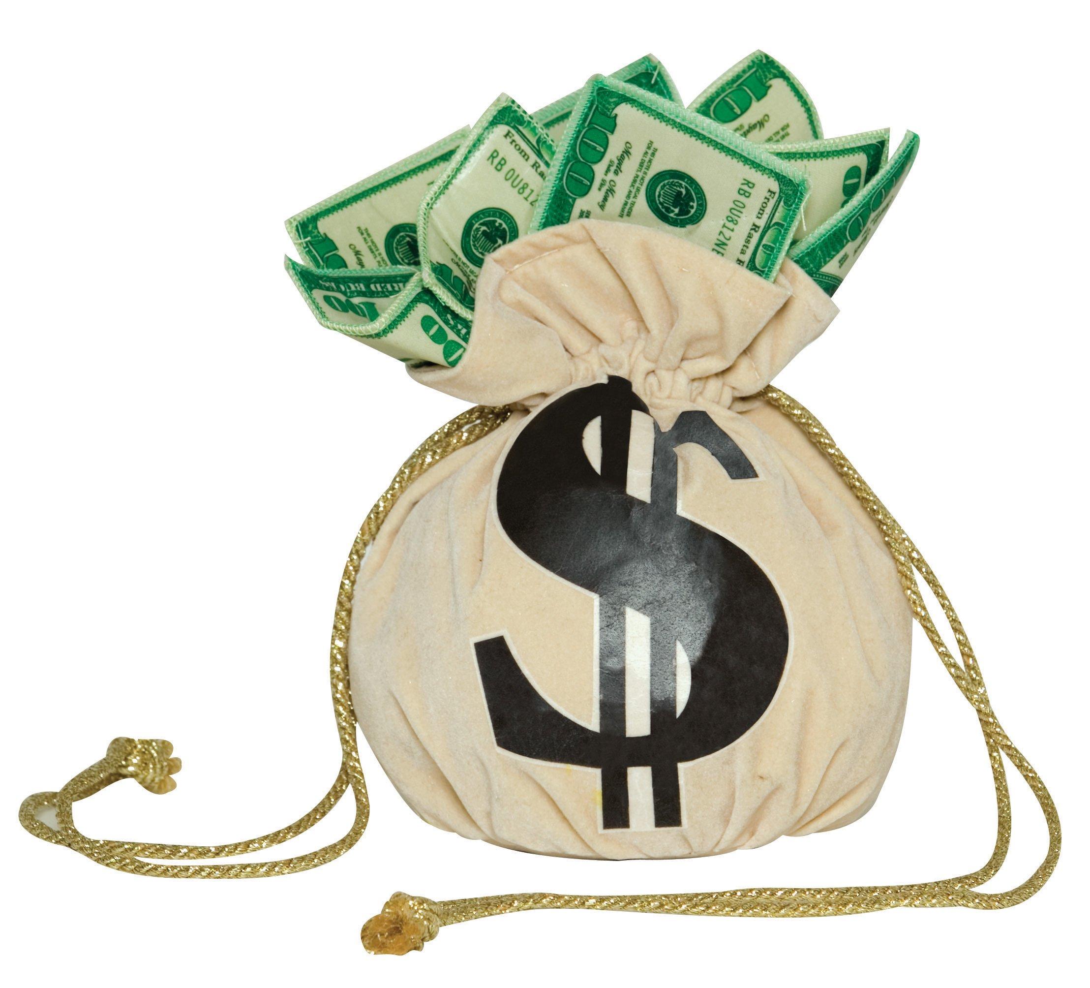 Image Credit:http://usafreemoney.com/wp-content/uploads/2013/08/bag_of_money_wallpaper-other.jpg