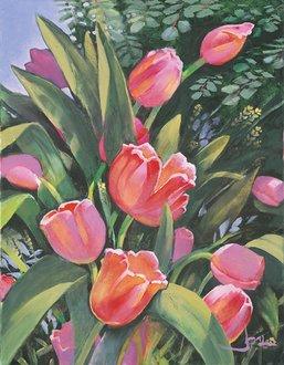 Image Credit: Tulips Joni Eareckson Tada