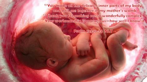 Psalm 139-13-14
