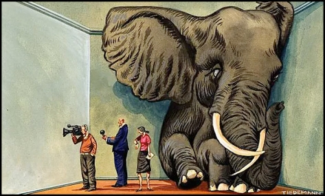 Elephant-in-the-room (1)
