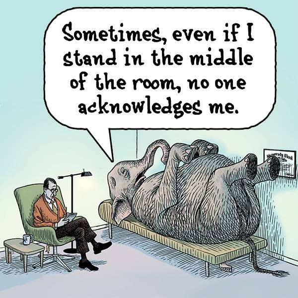 Addressing the Elephant in the Room…